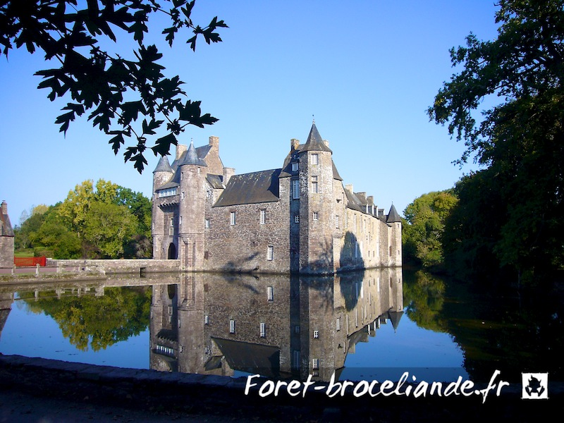 Connu Brocéliande en Bretagne BE93